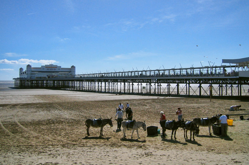 Weston-Super-Mare donkey rides and pier