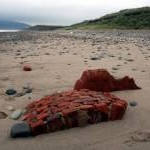 Beach Debris at Porth Neigwl (Hell's Mouth)