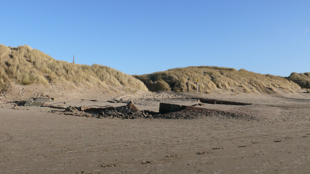 Dog Friendly Beaches Southport