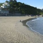 East Looe from the pierhead