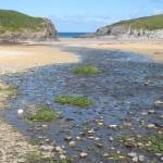 Porth Joke beach