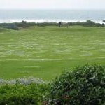 Pitch and putt by the sea, Woolacombe