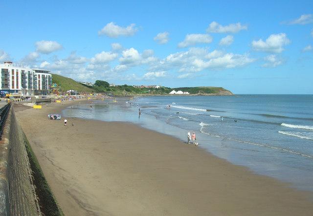 Dog Friendly Beaches East Yorkshire
