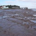 Low spring tide view to Penarth Pier