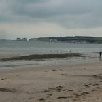 Studland Beach : Sandy Beach & Handfast Head