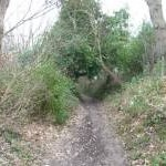 Studland : South West Coastal Path