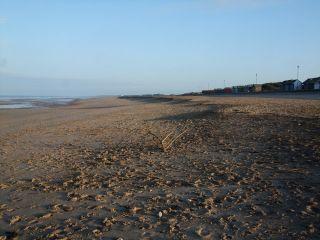 Sutton On Sea Dog Friendly Beaches