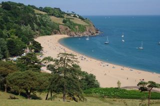 Dog Friendly Beach Near Devon Cliffs
