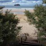 Coastal East Lothian : Tropical Paradise at Seacliff