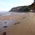 The beach by Shanklin Chine