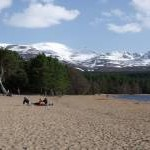 Two seasons at Loch Morlich