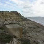 Hordle Cliff, dragon's tooth