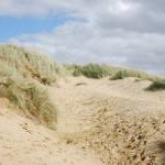 Blow out in the dunes, Camber Sands