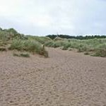 Sand dunes at Newborough Beach