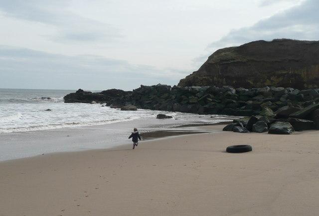 Nearest Dog Friendly Beach To Durham