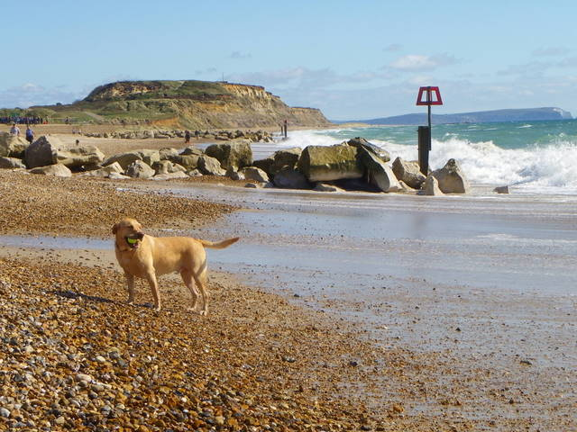 Hengistbury West Beach - Dorset