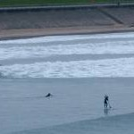 Surfers off Footdee beach, Aberdeen