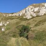Upper chalk outcrop at White Nothe