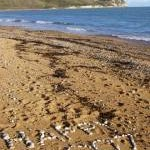 Written in stones on Ringstead Beach