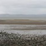 Swansea Bay at low tide, from West Cross