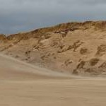 Dune blowout, Peffer Sands