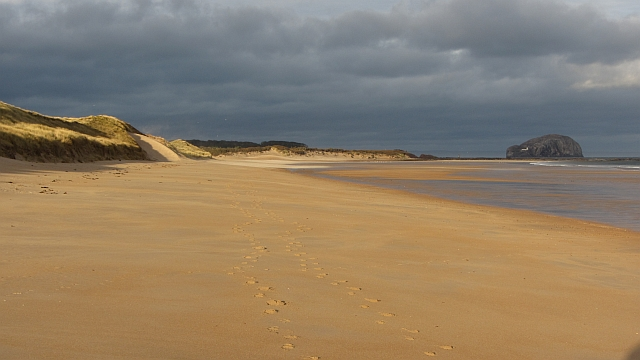 Best Dog Friendly Beaches Scotland