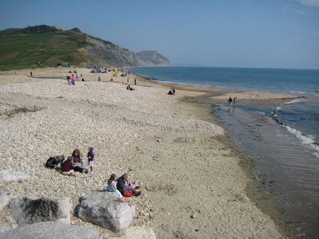 Best Dog Friendly Beaches Uk