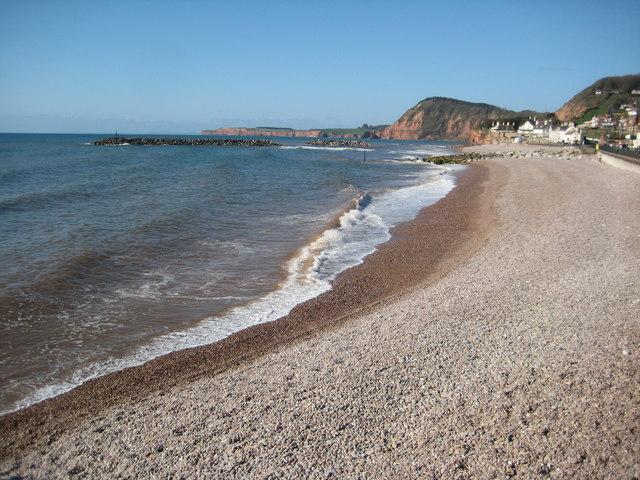 Best Dog Friendly Beaches South Devon