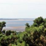 Point of Ayr Lighthouse, from Thurstaston Hill