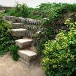Steps over a Cornish Hedge