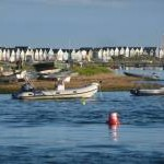Mudeford: inward facing beach huts