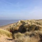 The Dunes at Talacre Warren SSSI