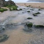 Stream on Porth Joke Beach