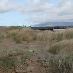 Twyni a charafanau - Sand Dunes and caravans Graig Ddu Black Rock Sands