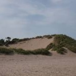 Blowhole in dunes at Lunan Bay