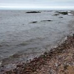 Beach below Victoria Park, Arbroath