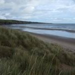 View up the coast, Lunan Bay