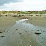 Outfall at Longmere Point