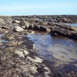 Rock pools at East Haven