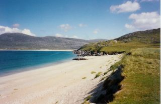Best Dog Friendly Beaches Scotland And Dog Frindly Camping
