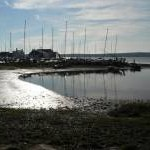 Mudeford: the mud catches the sun