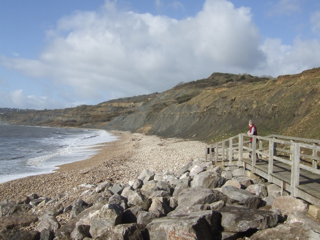 Charmouth Beach (West) - Dorset