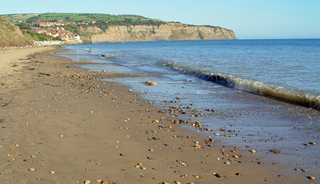 North Yorkshire Beaches Dog Friendly