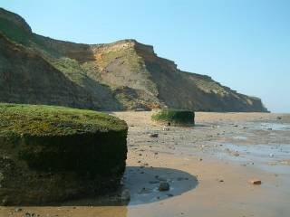 The Naze Beach