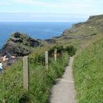 Forrabury and Minster: coast path approaching Boscastle