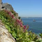 Cliff top cottages at Cawsand looking across Plymouth Sound
