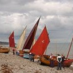 Traditional 'Beer Luggers' await an evening sail on Beer beach