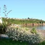 Flowers, promenade and beach at Broadsands