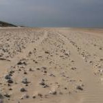 Winterton on Sea