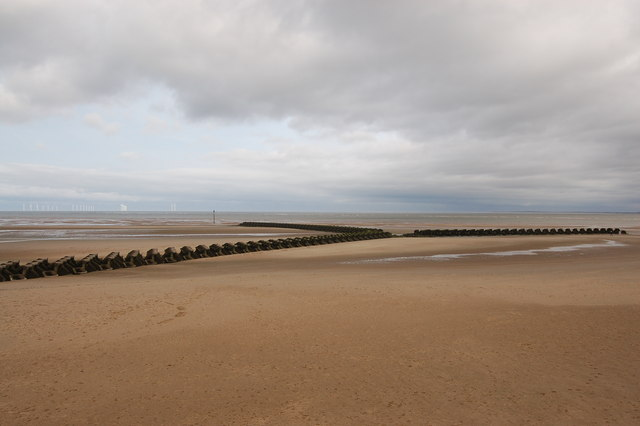 Dog Beaches In Brighton